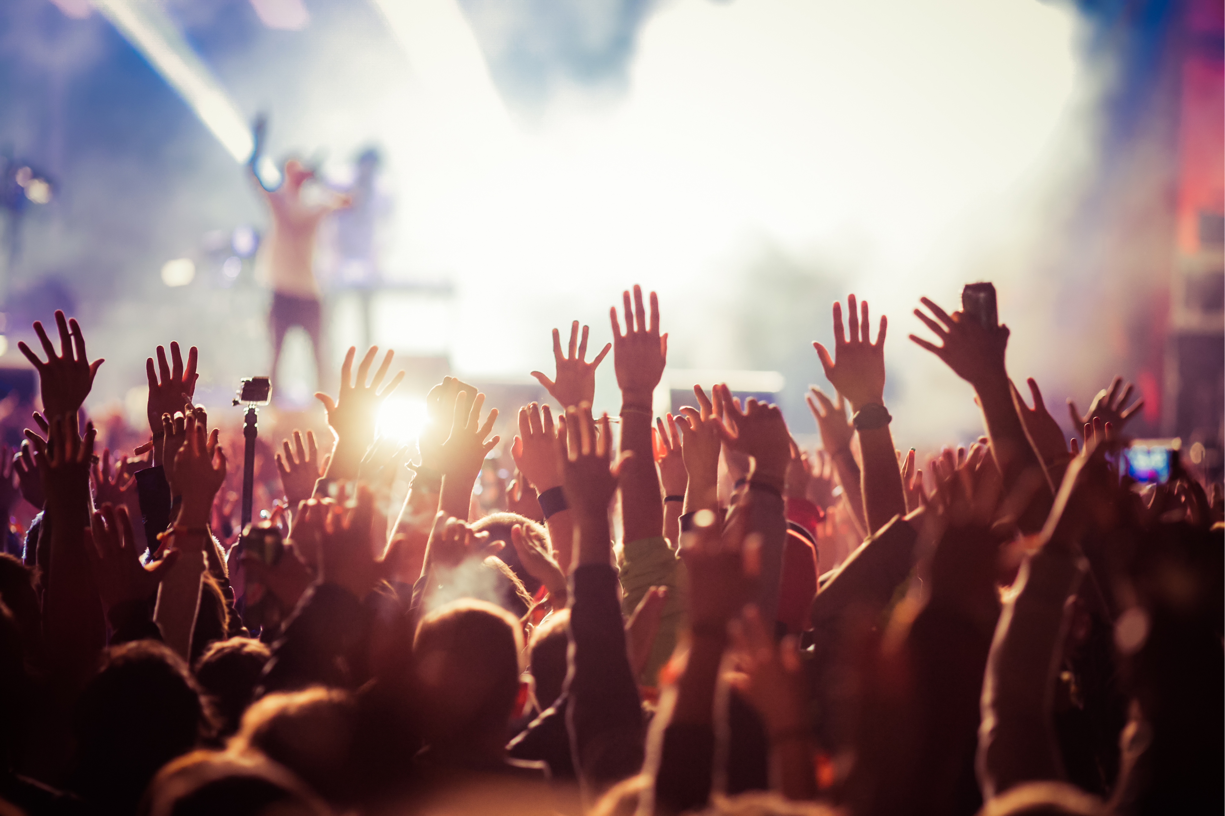 Our top five festival tips